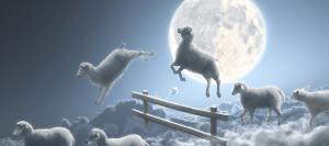 Психологический смысл сновидений поможет раскрыть психолог